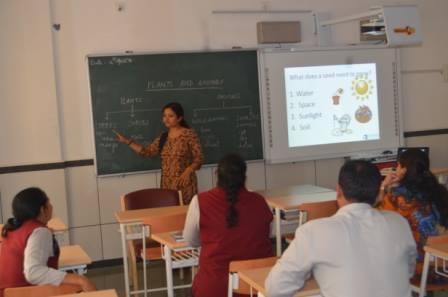 Teacher's Training